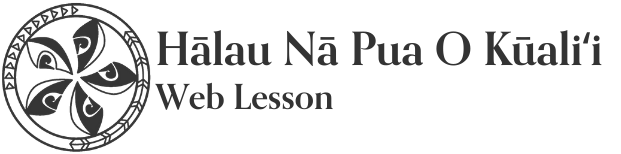 フラレッスン | フラダンス初心者から本気でフラを学べる動画サイト